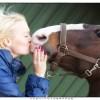 Liefde voor een paard